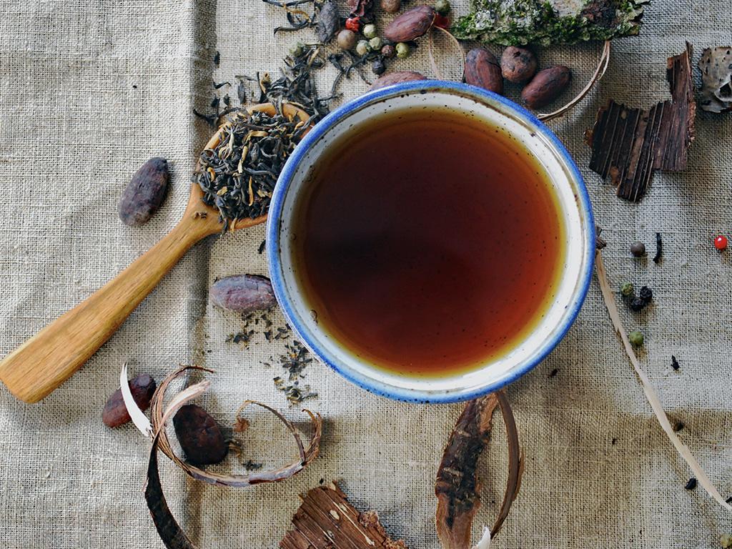 Tasse de thé et extraits de plantes